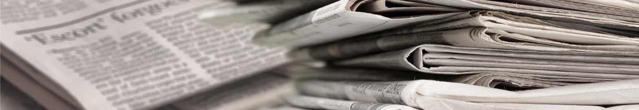 Presseberichte aus nah und fern über die Pfalz, Hambels und Wachenheim
